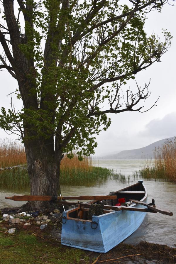 3_Lake_Boat_Lake_Petron_Macedonia_Greece_2017